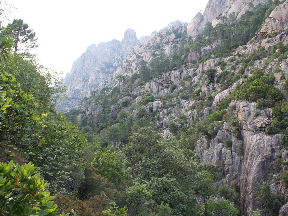 villa à louer en corse promenade foret Bavella nature corse Loisirs