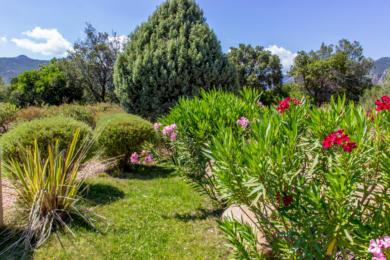 les jardins de la résidence